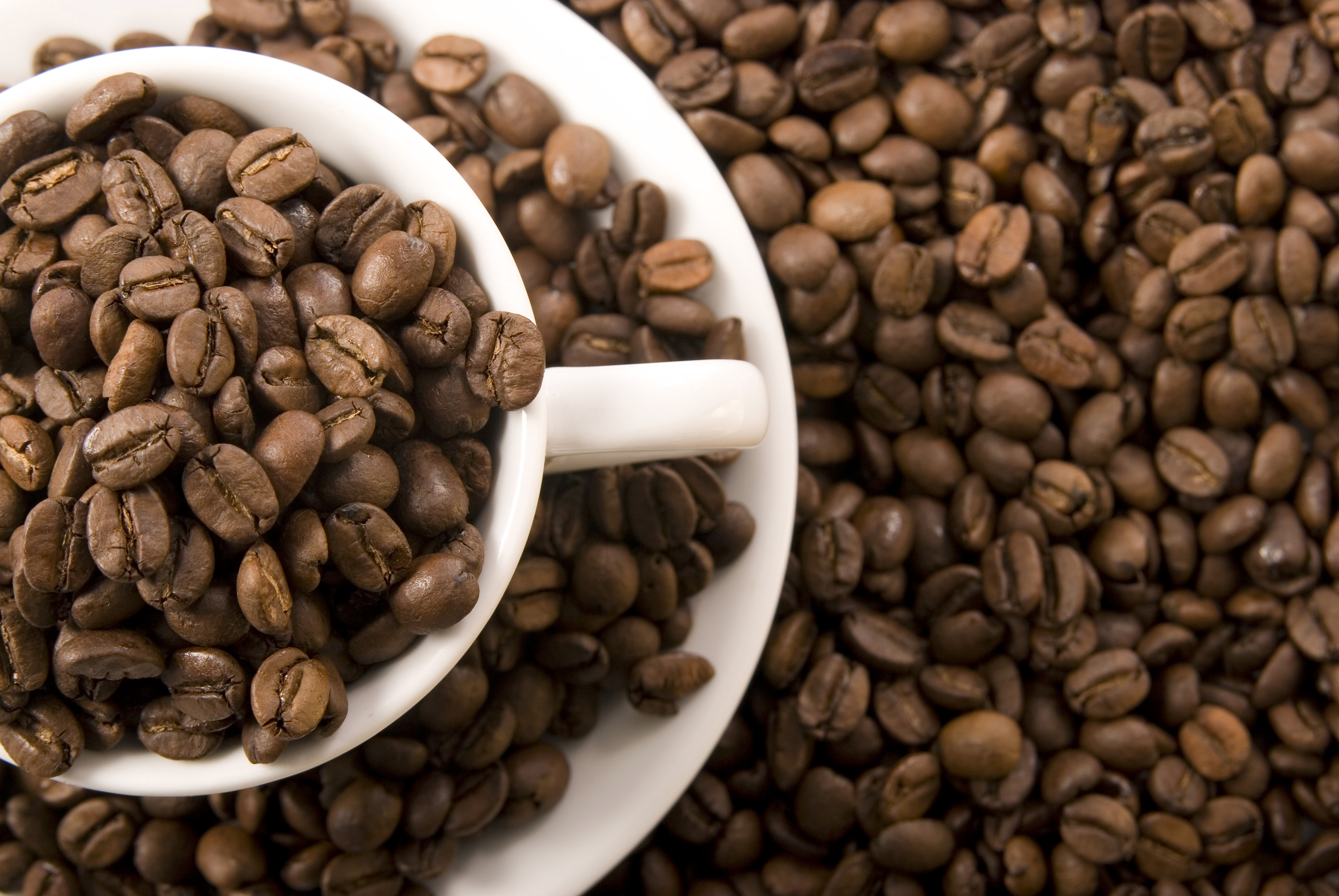 maison du café larmorique produits